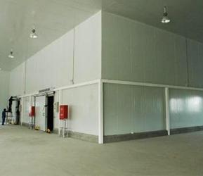 上海草莓冷庫廠家