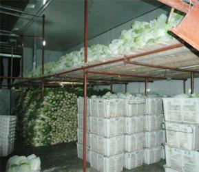 上海蔬菜冷庫