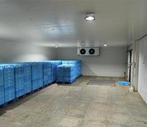 速凍冷庫廠家